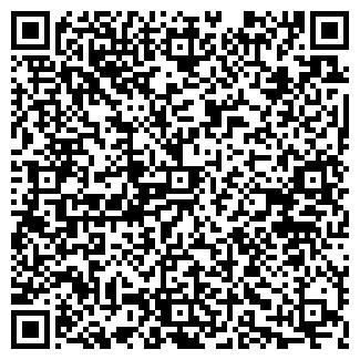 QR-код с контактной информацией организации Ray Lab