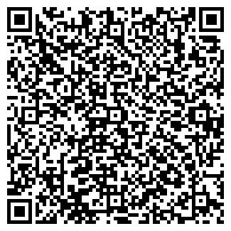 QR-код с контактной информацией организации Волжина, ЧП