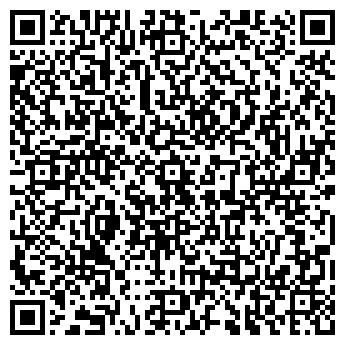 QR-код с контактной информацией организации Бирин Д.Е., СПД