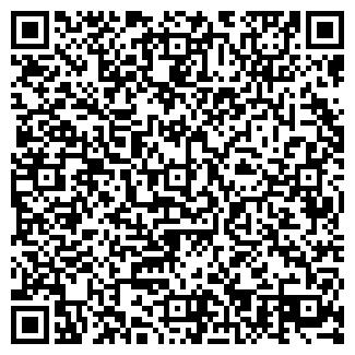 QR-код с контактной информацией организации Гейзер, ЧП