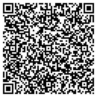 QR-код с контактной информацией организации Холодок, ИП