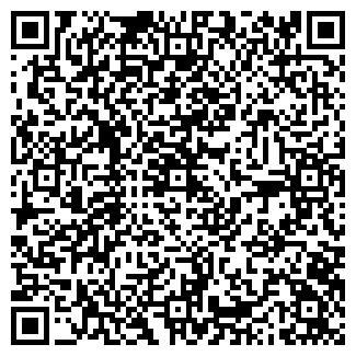 QR-код с контактной информацией организации КИСЕЛЕВ, ИП
