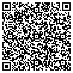 QR-код с контактной информацией организации Kava-e, Кава-е, ЧП