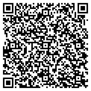 QR-код с контактной информацией организации Данила-мастер, ЧП