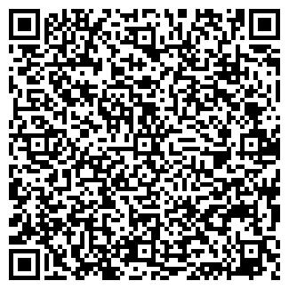 QR-код с контактной информацией организации Шторки, ЧП