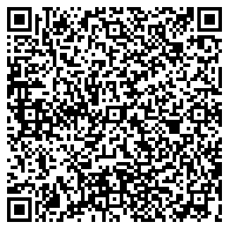 QR-код с контактной информацией организации Алиев, ИП