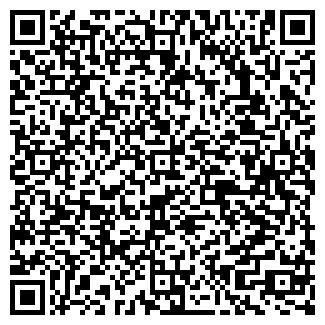 QR-код с контактной информацией организации Элит, ИП