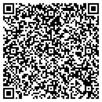 QR-код с контактной информацией организации Лебедь