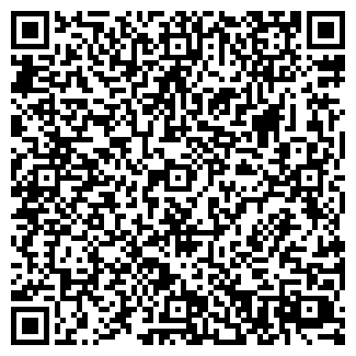 QR-код с контактной информацией организации Швачка, ЧП