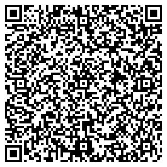 QR-код с контактной информацией организации ДВК (DVK), ООО