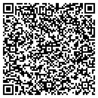 QR-код с контактной информацией организации Primavera, ЧП