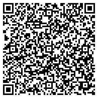 QR-код с контактной информацией организации Алеся, ЧП