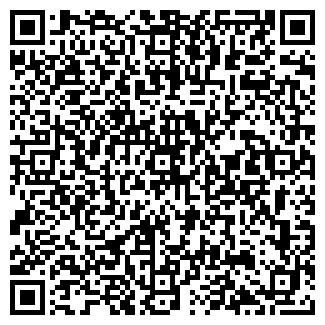 QR-код с контактной информацией организации Дияс, ИП