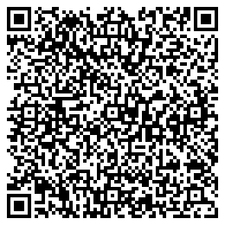 QR-код с контактной информацией организации Гастроном , ЧП