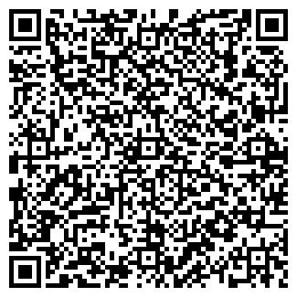 QR-код с контактной информацией организации БытХим, ООО