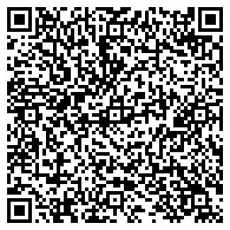 QR-код с контактной информацией организации За рулём Торговый Дом, ИП