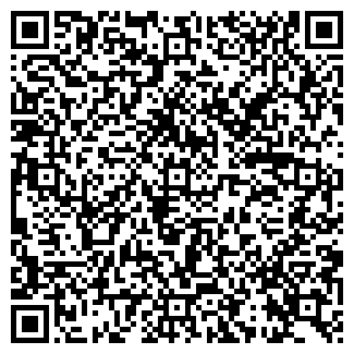 QR-код с контактной информацией организации Бином-НС, ТОО