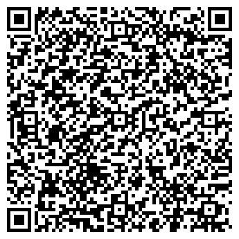 QR-код с контактной информацией организации BLIZZARD (Близзард), ИП