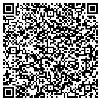 QR-код с контактной информацией организации Вендинг, ИП
