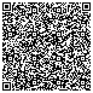 QR-код с контактной информацией организации Silver-Star (Сильвер-Стар), ООО