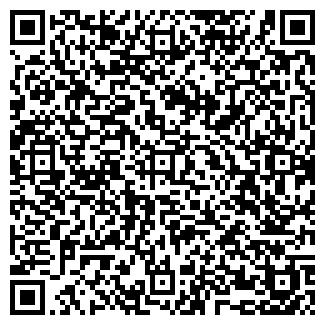 QR-код с контактной информацией организации Chemiecar