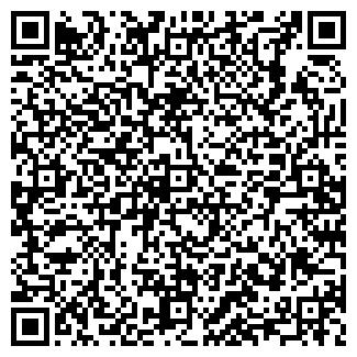QR-код с контактной информацией организации Метиса, ООО