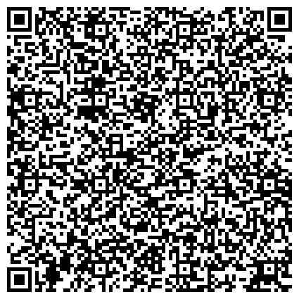 QR-код с контактной информацией организации Виза Стафф Интернационал (Viza Staff International),Компания