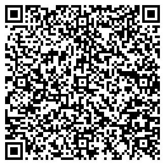 QR-код с контактной информацией организации Позитив, ЧП