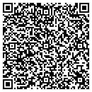 QR-код с контактной информацией организации Puzzlee, ООО