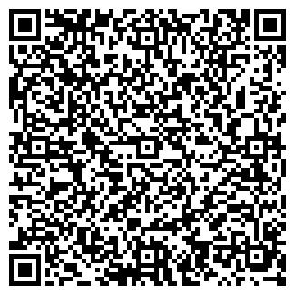 QR-код с контактной информацией организации Глобус, ИП