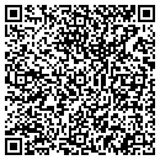 QR-код с контактной информацией организации Зангер, ИП