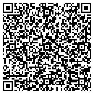 QR-код с контактной информацией организации Нур,ИП