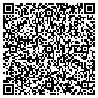 QR-код с контактной информацией организации Форекс, ИП