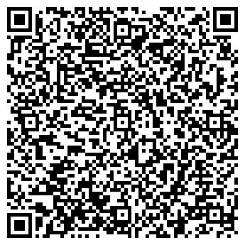 QR-код с контактной информацией организации Лейди Н (Lady N),ЧП
