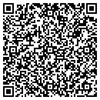 QR-код с контактной информацией организации MirPraznik, ЧП