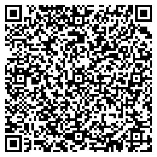 QR-код с контактной информацией организации Джива, ООО
