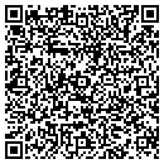 QR-код с контактной информацией организации Карнавал, ИП