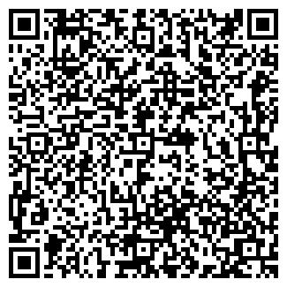 QR-код с контактной информацией организации Шоу, ИП