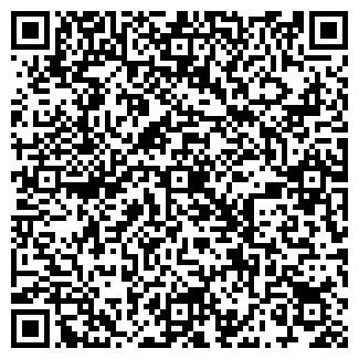 QR-код с контактной информацией организации Богема, ИП