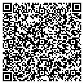 QR-код с контактной информацией организации Теремок, ИП