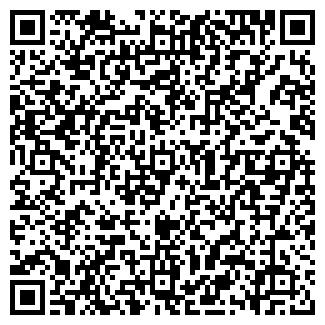 QR-код с контактной информацией организации Пугина, ИП