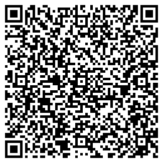 QR-код с контактной информацией организации vippersona