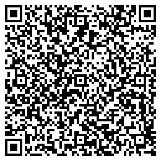 QR-код с контактной информацией организации MFM Group