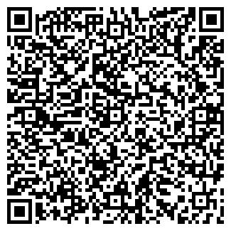 """QR-код с контактной информацией организации ЧП """"Ромашка"""""""