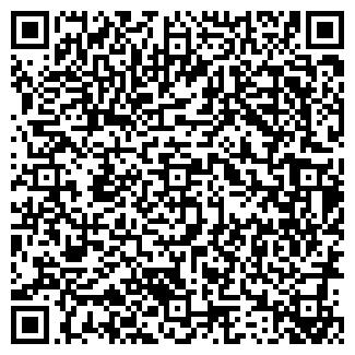 QR-код с контактной информацией организации Общество с ограниченной ответственностью BFM Group