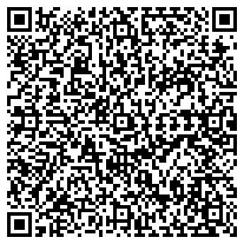 QR-код с контактной информацией организации Авто Америка, ООО