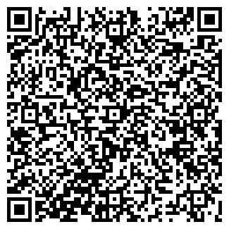 QR-код с контактной информацией организации Субъект предпринимательской деятельности Литару