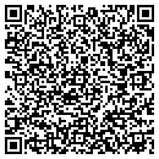 QR-код с контактной информацией организации ZEPLIN, ЧП