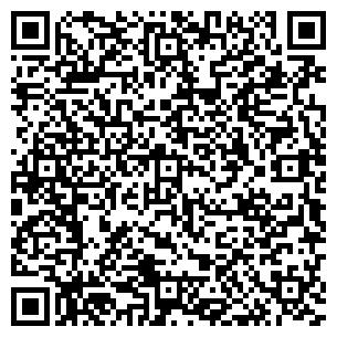 QR-код с контактной информацией организации Kremko Ltd, компания