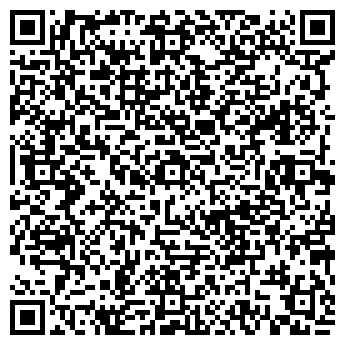 QR-код с контактной информацией организации Багрич,ЧП